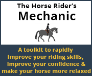 The Horse Rider's Mechanic 01 (Shropshire Horse)