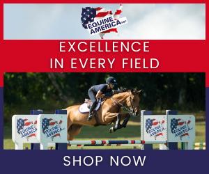Equine America (Shropshire Horse)