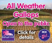 Kelsall Hill Gallops (Shropshire Horse)