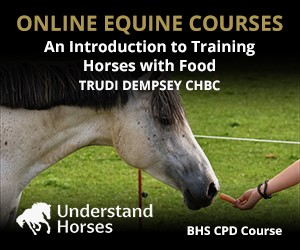 UH - An Introduction To Training Horses With Food (Shropshire Horse)