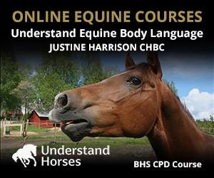 UH - Understand Equine Body Language (Shropshire Horse)